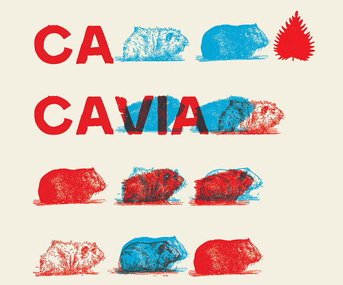 Illustration for Cacavia01 font